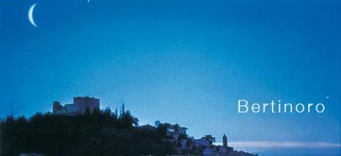 Bertinoro-panorama-notturno